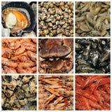 Collage de fruits de mer Photos stock