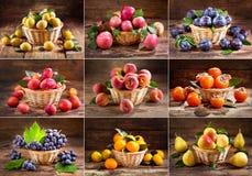 Collage de frutas frescas en una cesta Fotos de archivo libres de regalías