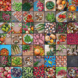 Collage de imágenes con los productos, la visión superior Imágenes de archivo libres de regalías