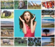 Collage de imágenes de la fauna y de hermosas vistas del Kenia imagenes de archivo