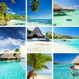 Collage de imágenes tropicales del moorea y de Tahití imagenes de archivo