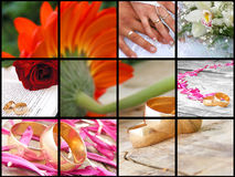 Collage de la boda Foto de archivo libre de regalías