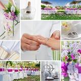 Collage de la boda Fotografía de archivo