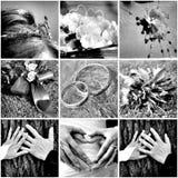 Collage de la boda Fotografía de archivo libre de regalías