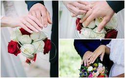 Collage de la boda - manos con los anillos, votos de renovación de la gente Imágenes de archivo libres de regalías
