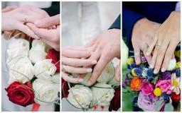 Collage de la boda - manos con los anillos, votos de renovación de la gente Fotos de archivo