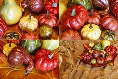Collage de la decoración de la calabaza de las calabazas de la cosecha del otoño Imagenes de archivo