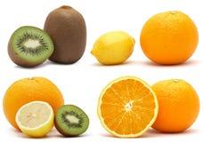 Collage de la fruta cítrica y del kiwi Imágenes de archivo libres de regalías