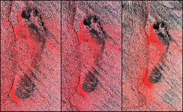 Collage de la impresión del pie Imagen de archivo libre de regalías