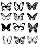 Collage de la mariposa Foto de archivo