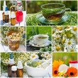 Collage de la medicina alternativa Fotos de archivo