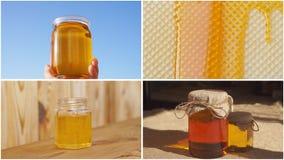 Collage de la miel almacen de metraje de vídeo