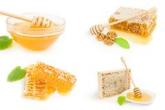 Collage de la miel en blanco Imagenes de archivo