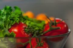 Collage de la nutrición de los tomates y de los verdes, imagen de archivo libre de regalías
