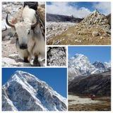 Collage de la ruta turística de la mucha altitud nepalesa popular Fotos de archivo libres de regalías