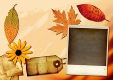Collage de la tela Fotos de archivo libres de regalías