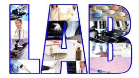 Collage de laboratoire banque de vidéos