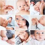Collage de las fotos del bebé recién nacido imagen de archivo libre de regalías