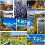 Collage de las fotos de la naturaleza fotos de archivo libres de regalías