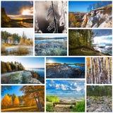 Collage de las fotos de la naturaleza foto de archivo