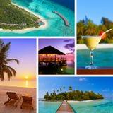 Collage de las imágenes de la playa de Maldivas y de x28; mi photos& x29; Imagen de archivo
