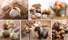 Collage de las imágenes clasificadas de los huevos marrones para pascua Foto de archivo