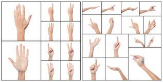 Collage de las manos de la mujer, diversos gestos. fotografía de archivo libre de regalías