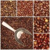 Collage de las mezclas de los granos de café Foto de archivo