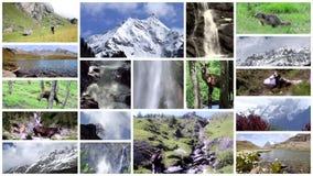 Collage de las montañas Altas montañas, flora, fauna y gente almacen de video