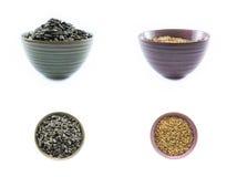 Collage de las semillas de girasol en tazas coloreadas en un fondo blanco Foto de archivo libre de regalías
