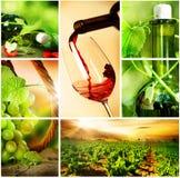 Collage de las uvas de Wine.Beautiful fotografía de archivo libre de regalías
