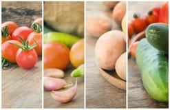 Collage de las verduras frescas Imagen de archivo