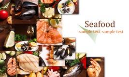 Collage de los mariscos fotos de archivo