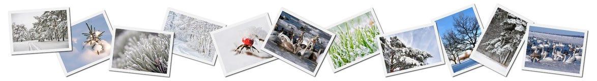 Collage de los paisajes del invierno Imagenes de archivo