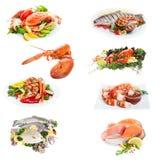 Collage de los pescados imagen de archivo libre de regalías