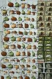 Collage de los sellos de los E.E.U.U. Imágenes de archivo libres de regalías