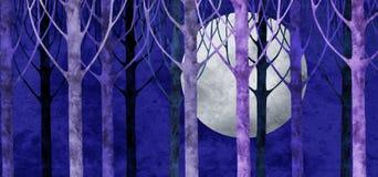 Collage de lune de forêt Photo stock