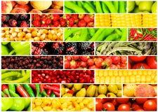 Collage de muchas diversas frutas Foto de archivo libre de regalías