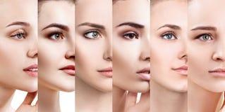 Collage de mujeres hermosas con la piel perfecta fotografía de archivo libre de regalías