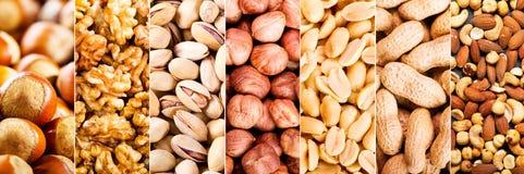 Collage de nueces mezcladas fotos de archivo libres de regalías