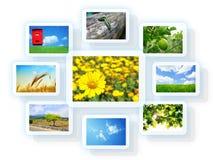 Collage de photo Images libres de droits