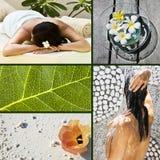 Collage de plusieurs photos pour le concept de station thermale Photographie stock libre de droits