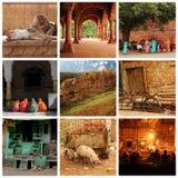 Collage de Rajasthán Fotografía de archivo libre de regalías