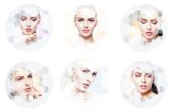 Collage de retratos femeninos Caras sanas de mujeres jovenes Balneario, elevación de cara, concepto del collage de la cirugía plá Fotos de archivo libres de regalías