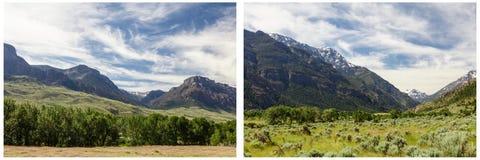 Collage de scène de forêt d'herbe verte de montagnes Photos stock