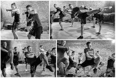 Collage de sport de boîte de groupe images libres de droits