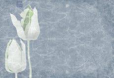 Collage de tulipes bleues Image libre de droits