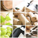 Collage de vin Photographie stock