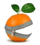 Collage degli aranci Immagini Stock Libere da Diritti