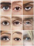 Collage degli occhi umani Fotografia Stock Libera da Diritti